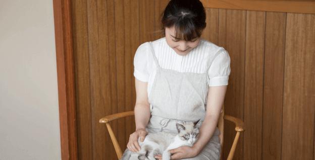 猫の育て方アドバイザー