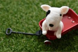 羊毛フェルトアドバイザー