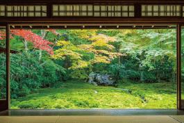 日本の四季インストラクター