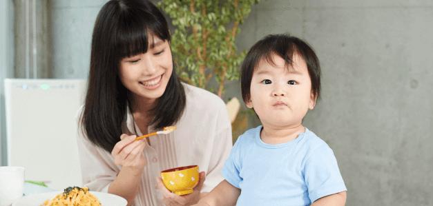 白菜 幼児食
