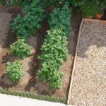 園芸インストラクター資格試験概要・過去問題集