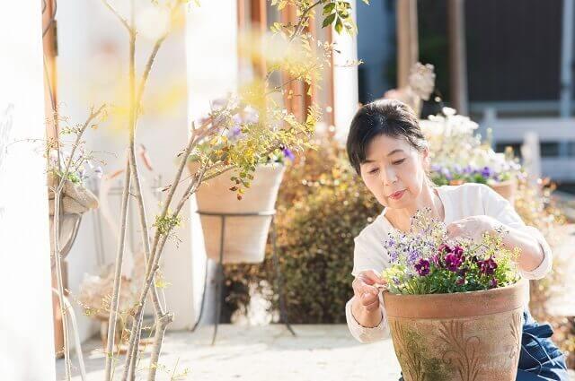 お庭をキレイに!台風の時期に備えておきたいポイント