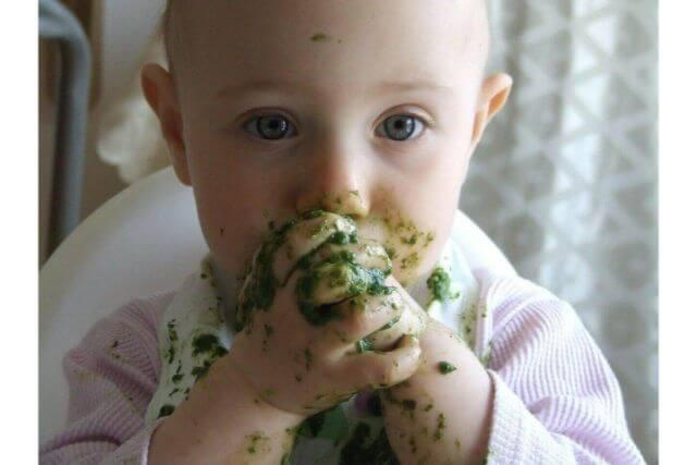 年齢別・子どもに対しての食育の必要性や、具体的な取り組み方