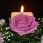 眺めても火をつけても楽しい!癒し効果抜群のボタニカルキャンドル