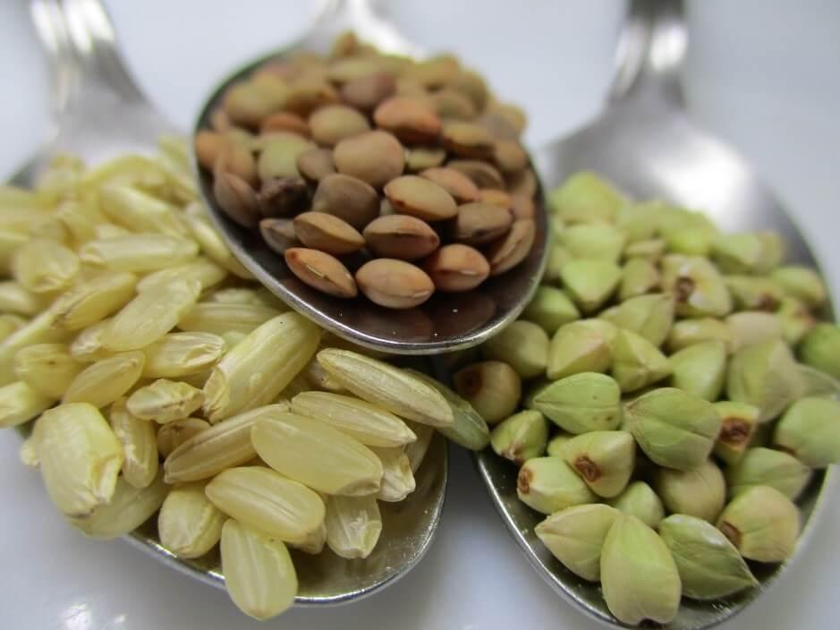 マクロビオティックの基本食「玄米」の健康増進効果とは?