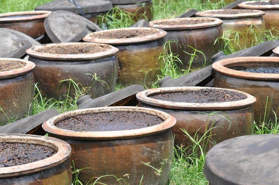 奥が深い!発酵と醸造の基本知識について