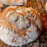 なぜうまくいかない?手作りパンが固くなる原因と対処法