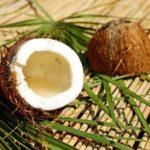 どれぐらい保存できる?ココナッツオイルの賞味期限と使い切るアイデア