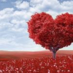 真実の愛!ルノルマンカードの「ハート」が表す意味とは?