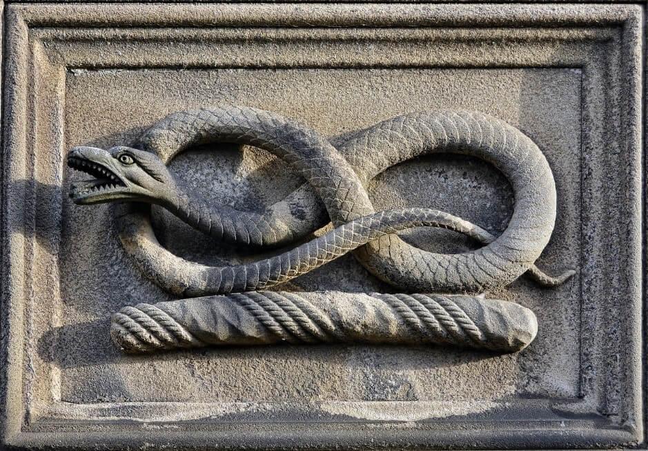 裏切りの予感?ルノルマンカードの「蛇」が表す意味