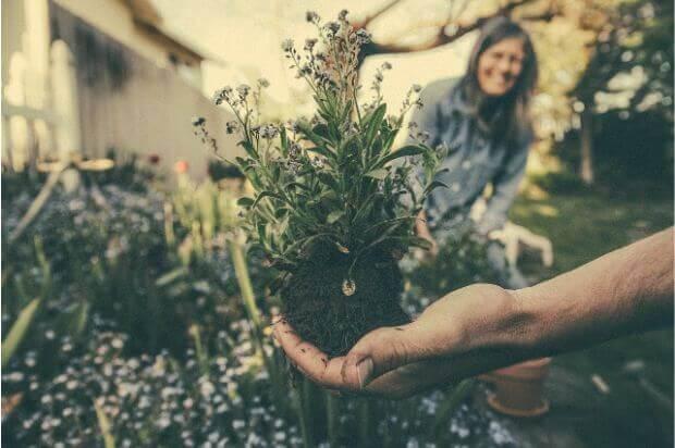どうすればいいの?土の処分と再生方法