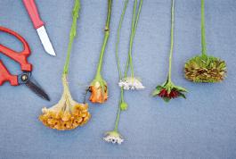 花の生け方インストラクター