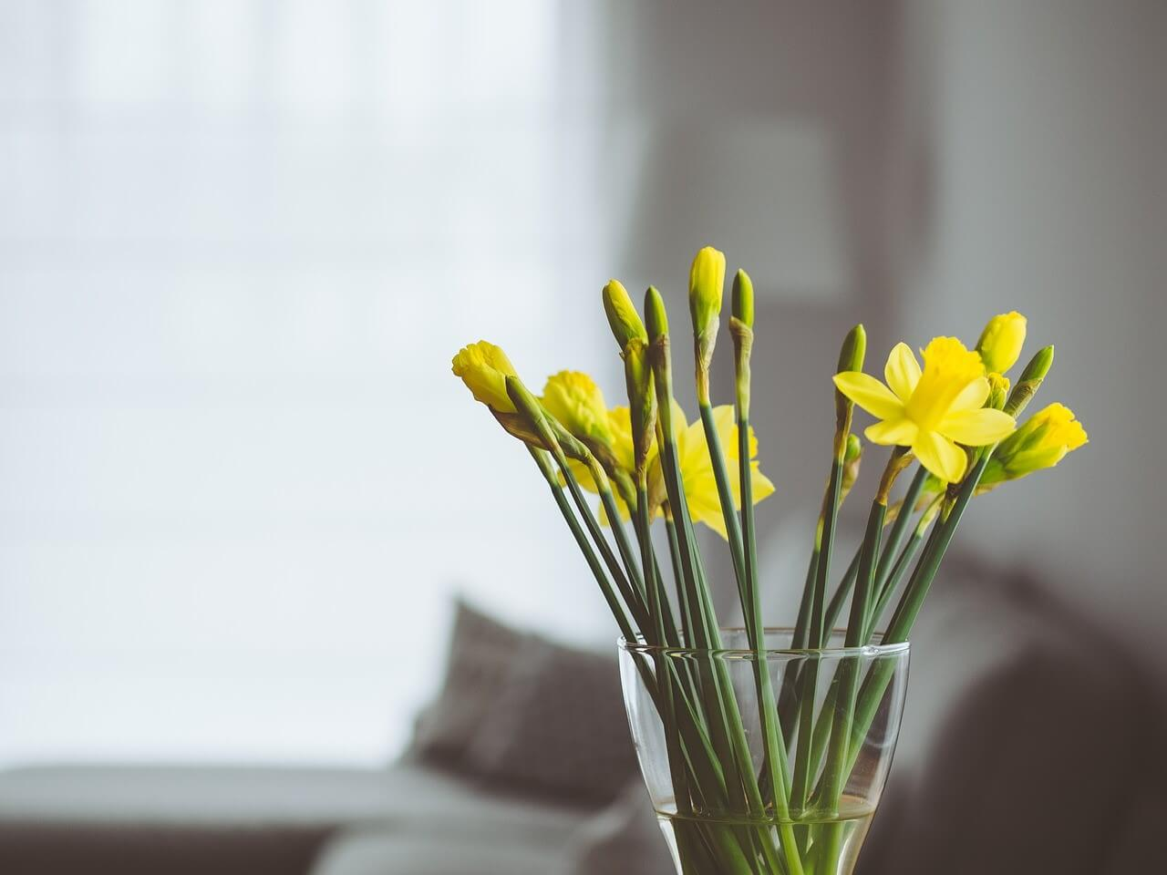 基本が重要!華道の礼儀作法と生け花の基本について