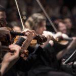 オーケストラアドバイザーW資格取得講座