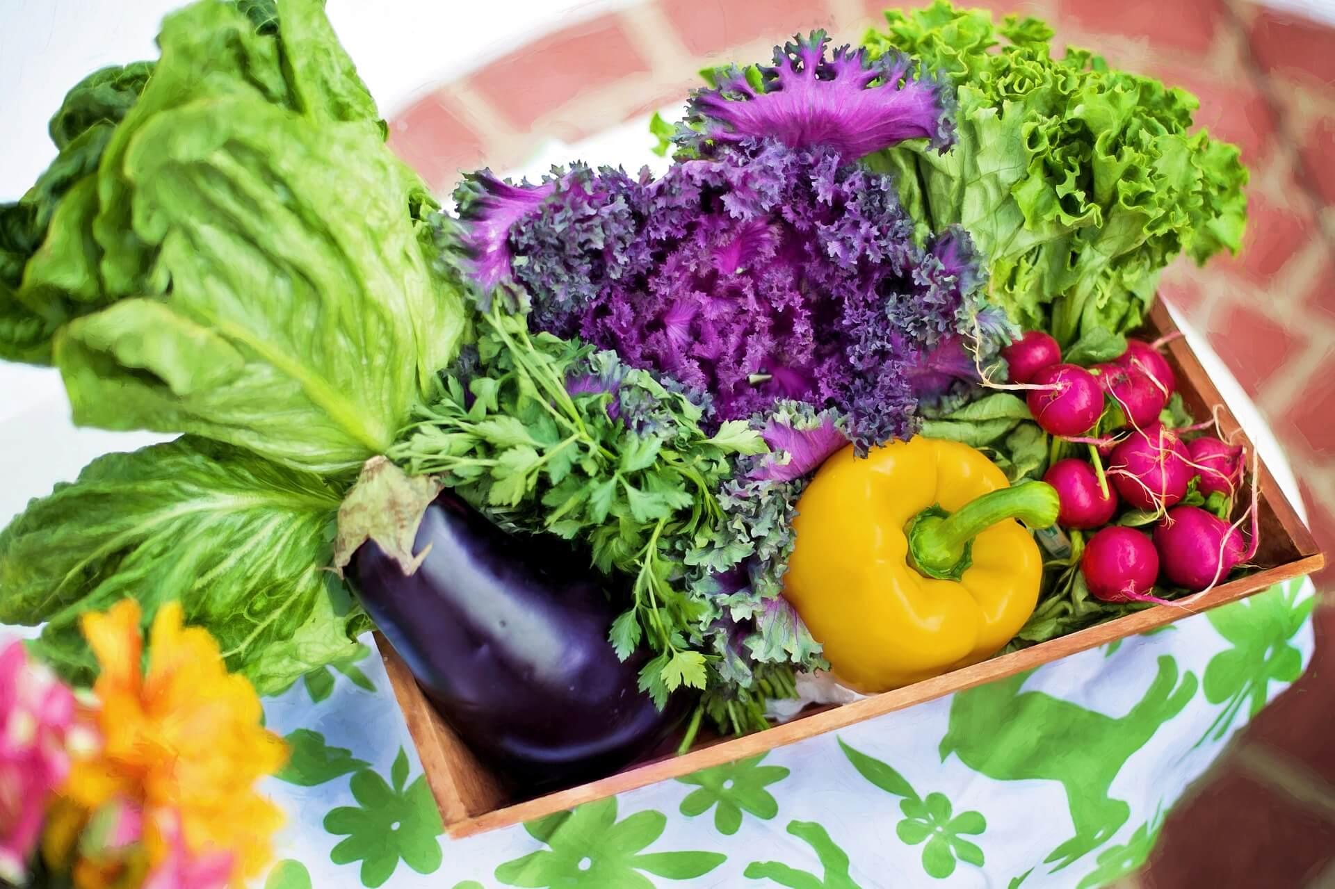 オーガニック野菜アドバイザーW資格取得講座